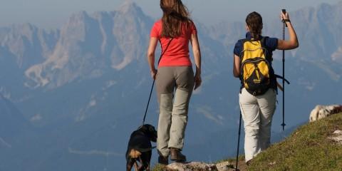 Tierisch gut - Urlaub mit Hund