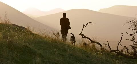 Wandern mit Hund 1