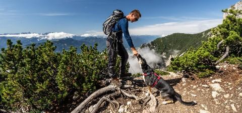 Dobratschwanderung mit Hund